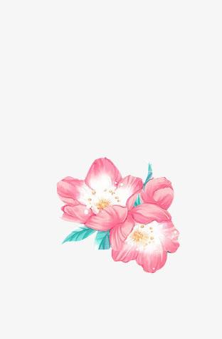 古风手绘桃花,桃花树干