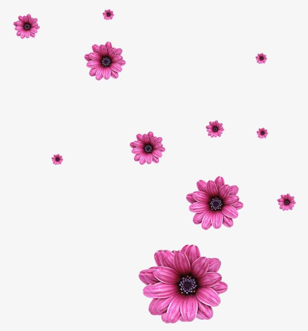 紫红色花朵飘落免抠素材免费下载_觅元素51yuansu.com