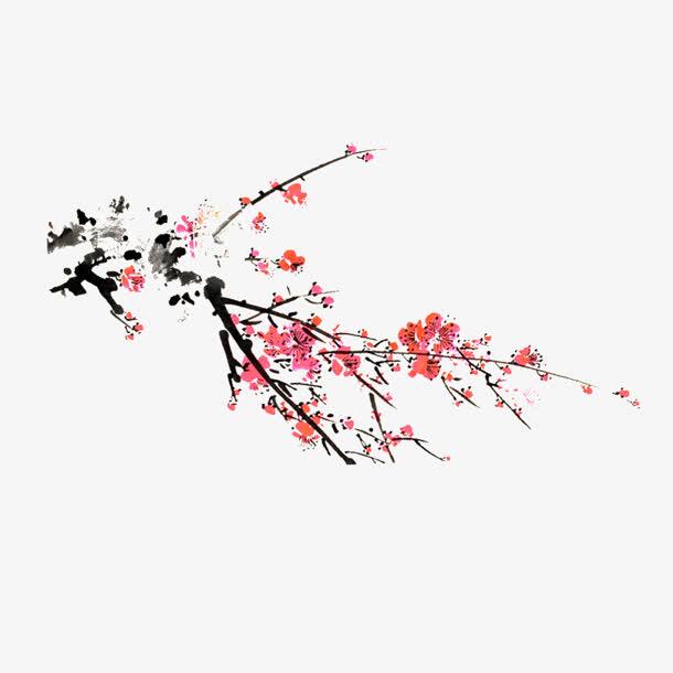 白色花朵手绘梅花素材