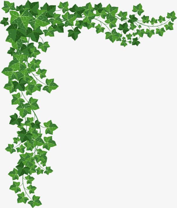 绿叶植物边框素材免抠素材免费下载_觅元素51yuansu.