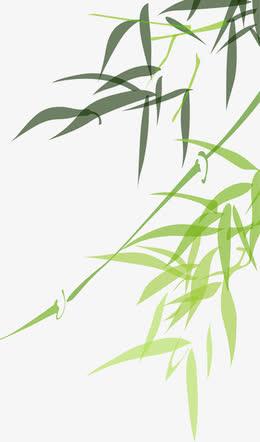 端午节竹子画装饰