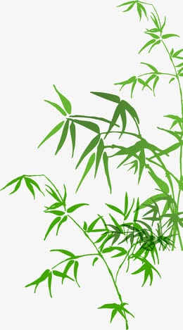 端午毛竹叶子彩绘竹子