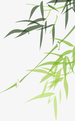 扁平竹子竹叶侧边装饰