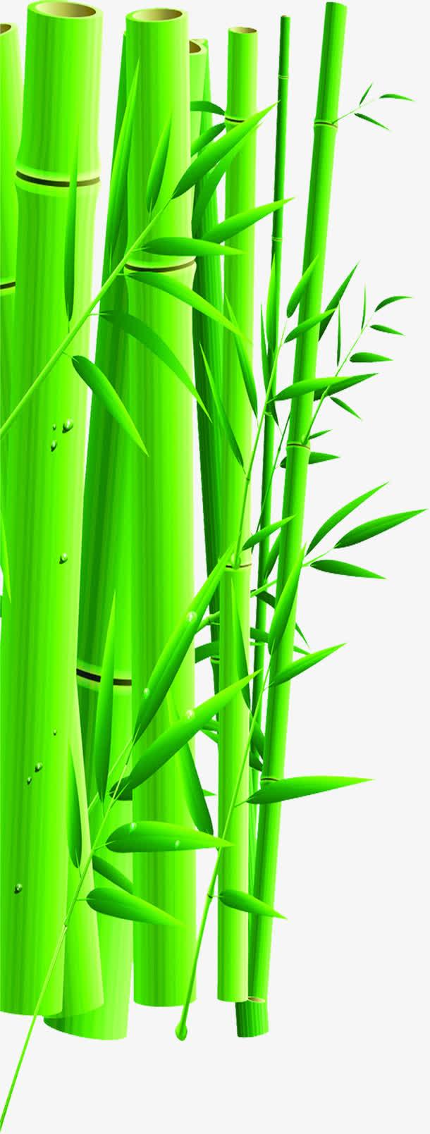 绿色竹子手绘