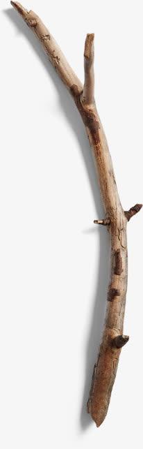 黑色树枝剪影干枯免抠素材免费下载_觅元素51yuansu.
