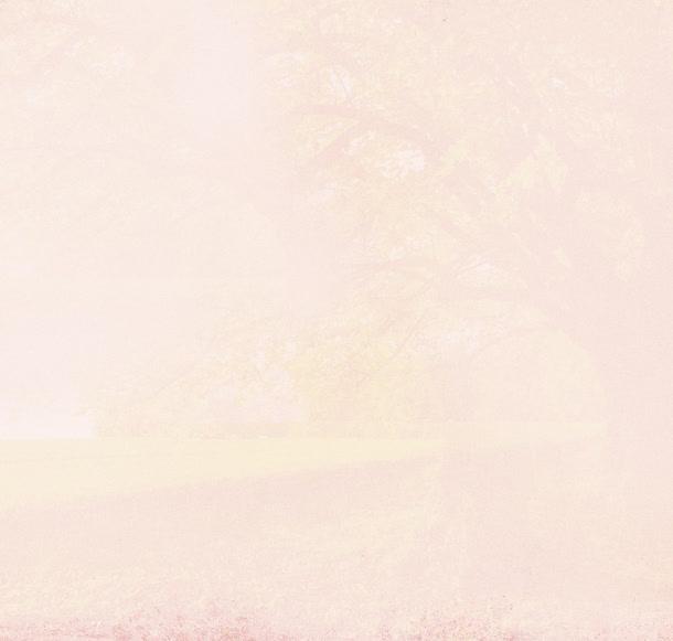纯色背景矢量背景高清图片