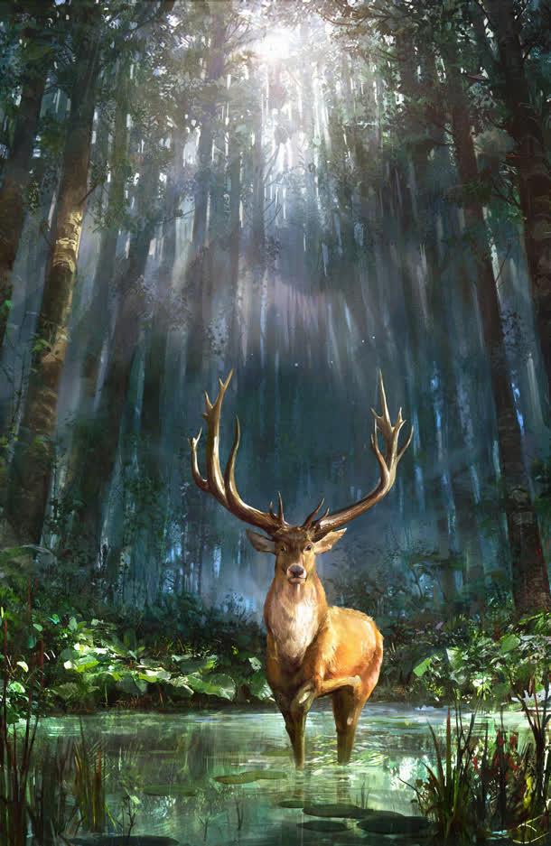 背景元素 卡通/手绘 > 茂密森林大角麋鹿海报背景  收藏 下载高清图片