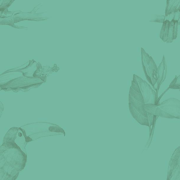 纯色背景花纹海报图
