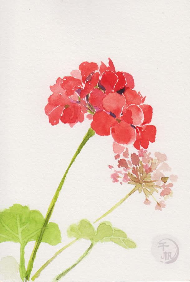 文艺清新水彩花朵